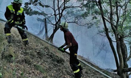 Waldbrand Wixberg: Feuerwehr muss auf Weltkriegsmunition achten