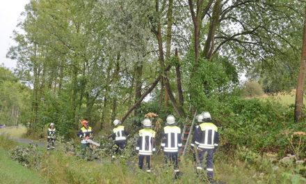 Trotz Unwetterwarnung nur ein Einsatz für Feuerwehr Balve