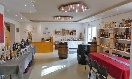 Samstag: Offene Weinprobe im Weinhaus Schmitz