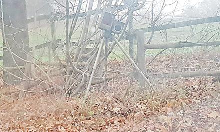 Achtung: Polizei blitzt an der Gransauer Mühle