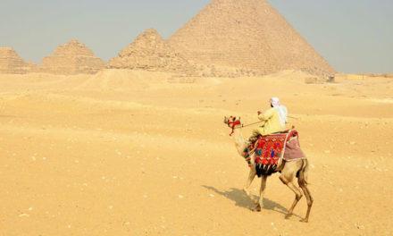 Balver warten auf ein Kamel