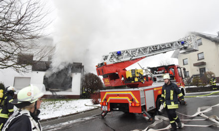 Beckum: Nach Wohnungsbrand Betretungsverbot – Feuerwehr findet vermisste Katzen