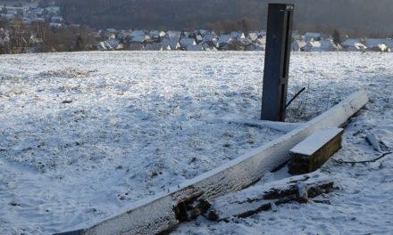 Nach Hornissen-Attacke auf Kranführer wird neues Wachtloh-Kreuz erst im Sommer aufgestellt