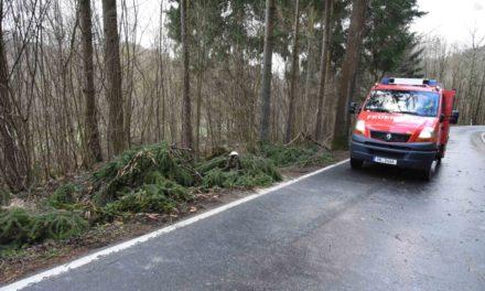 Orkanböen: Großalarm für Balver Feuerwehr – Straßensperre zwischen Eisborn und Asbeck