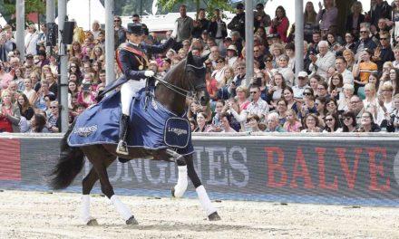 DM-Gold für Dorothee Schneider im Grand Prix Special – Favoritin Isabell Werth gestrauchelt