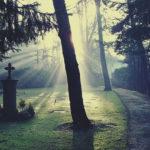 CORONA-VIRUS: Patient aus Menden ist verstorben