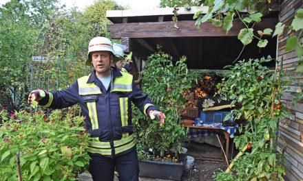 Feuer in Gartenhütte kommt Balverin teuer zu stehen