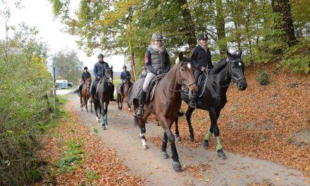Reiterverein Balve lädt zum Herbstritt durch die bunten Wälder ein