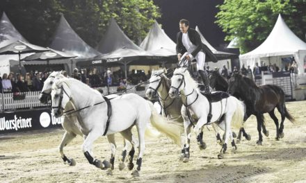 LONGINES BALVE OPTIMUM 2020: Tickets extra günstig