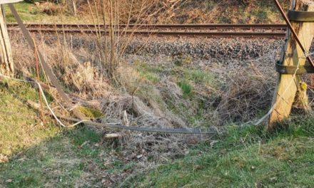Entsetzen in der Amecke – Weidezäune an der Bahnlinie durchtrennt