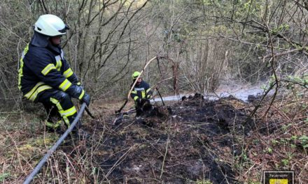 Waldbrand in Neuenrade