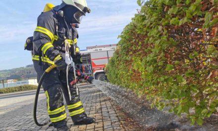 Nach Unkrautvernichtung muss Feuerwehr ausrücken