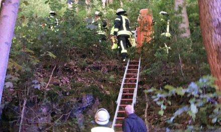 """Hummel"" entdeckt vermisste 80-Jährige im Unterholz"