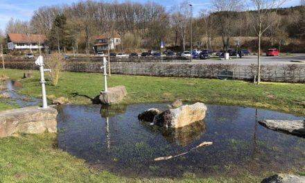 """Gut für """"Heimathafen"""" der Goldbäckerei Grote: Stadt Sundern will Helma-Parkplatzfläche pachten"""