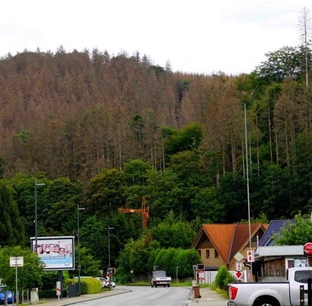 Stadt Sundern muss auf 12 Mio. Euro Gewerbesteuer verzichten – Dennoch Ausbau der Kita in Hövel geplant