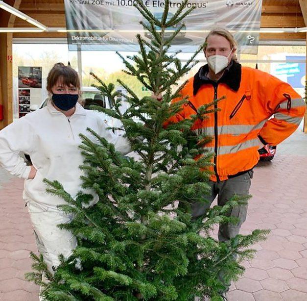 Werbegemeinschaft Balve dekoriert City mit Weihnachtsbäumen